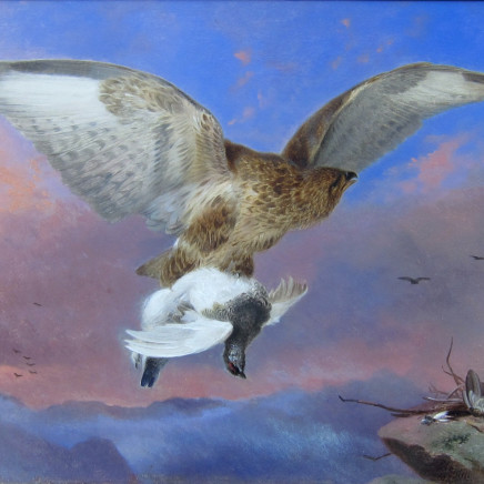 Richard Ansdell R.A. - Buzzard and Ptarmigan