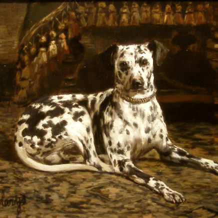 Antoni Clarys - Portrait of a dalmation