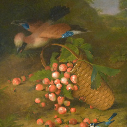 William Jones of Bath - Bluejay with strawberries
