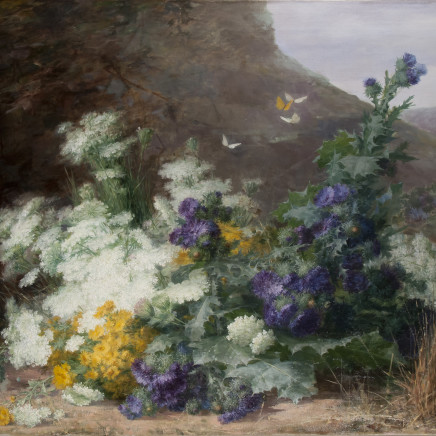 Berthe Costadau - Wildflowers in a landscape