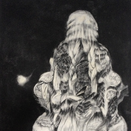 Rachel Bullock - Morand lesovii, 2012