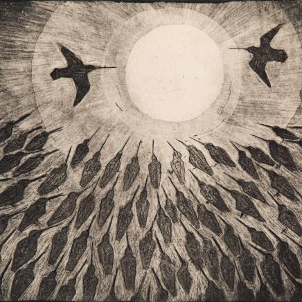 Paul Bloomer - Owl at Virkie