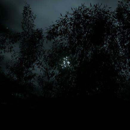馬丁·迪爾鮑姆 - Found Footage, 2012