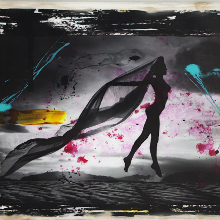 Raphael Mazzucco, Dust, 2013
