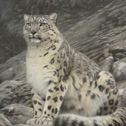 Gary Stinton - Amur Tiger - Close Encounter III