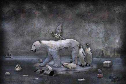 Marcin Owczarek, THIN ICE, 2016