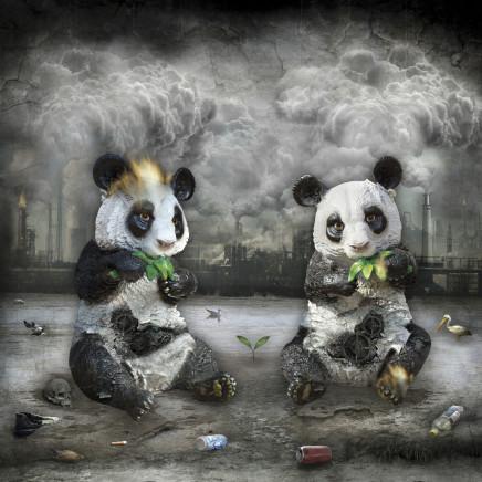 Marcin Owczarek, THE LAST PANDAS ON EARTH, 2014