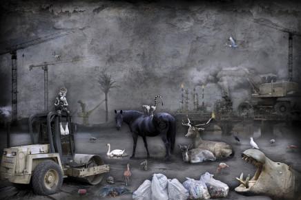 Marcin Owczarek, NO PLACE TO GO, 2015
