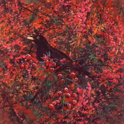 Berries and blackbird