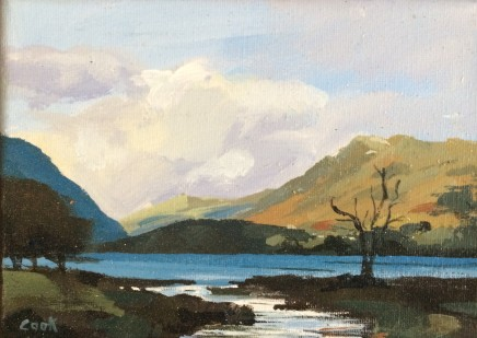 Colin Cook, Buttermere