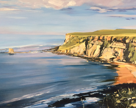 Colin Cook, Summer evening at Saltwick Bay