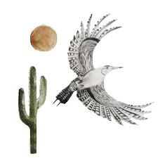 Beatrice Forshall, Gila Woodpecker