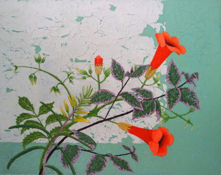 Jessica Holmes, Perpetual Spring, Chinese Trumpet