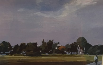 Colin Cook, Wimbledon Common