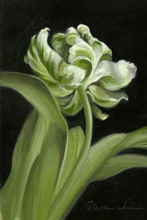 Tanja Moderscheim, Parrot Tulip 3