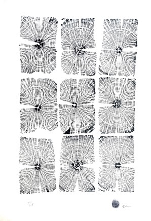 Dan Robson, Windows II (European White Wood)