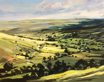 Colin Cook, Swaledale in the Sun