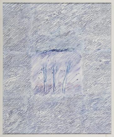 Ugo La Pietra, Fiori di campo, 1995