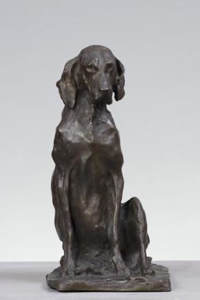 Paul Troubetzkoy, Hunting dog