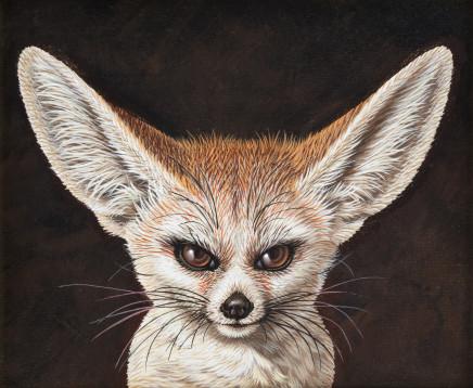 Saverio Polloni, Fox