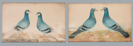 Two paintings depicting doves, Prob. England, 19th Century