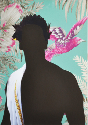 Nicola Green, Carnival, Birds of Paradise, 2016