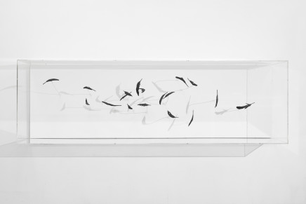 Maya Kramer, Providence/Entropy天意/熵, 2014