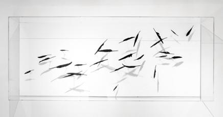 Maya Kramer, Against the Wind 逆风而行, 2014