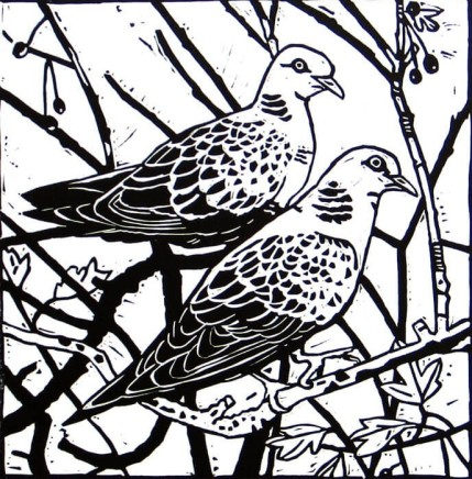 Ann Lewis RCA, Two Lovely Doves
