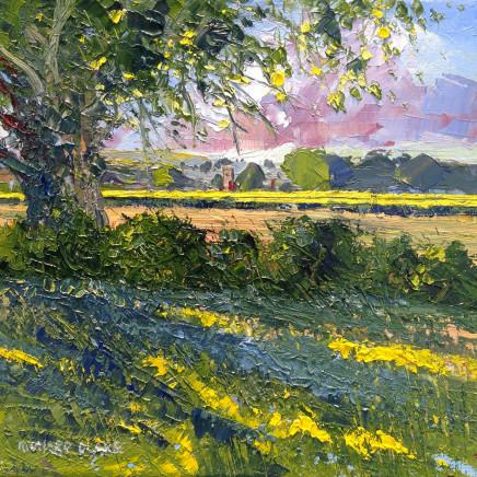 Richard Clare, Pastoral Cheshire