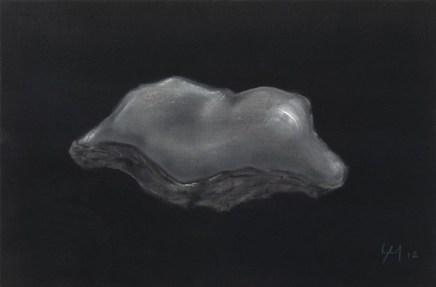 Grégoire Müller, Oyster Shell, 2012