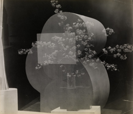 Constantin Brancusi, Timidité, Bouquet en surimpression, c. 1928
