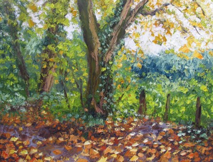 Colin Halliday, Autumn Wood, 2013-14