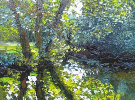Colin Halliday, Summer Reflections, 2014-15