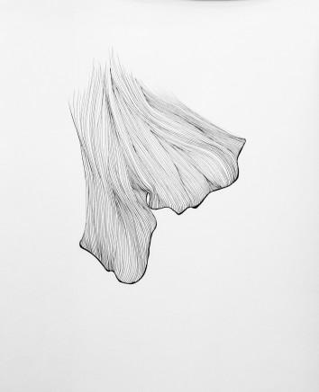 Lucy Ribeiro, Ginko III, 2013
