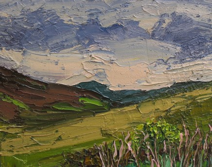 Colin Halliday, Wild Moorland, 2014-15