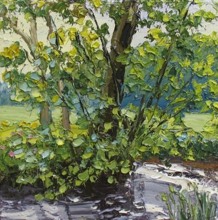 Colin Halliday, Spring, 2014-15