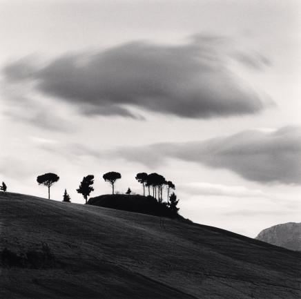 Michael Kenna, Pine Trees at Dusk, Loreto Aprutino, Abruzzo, Italy, 2016