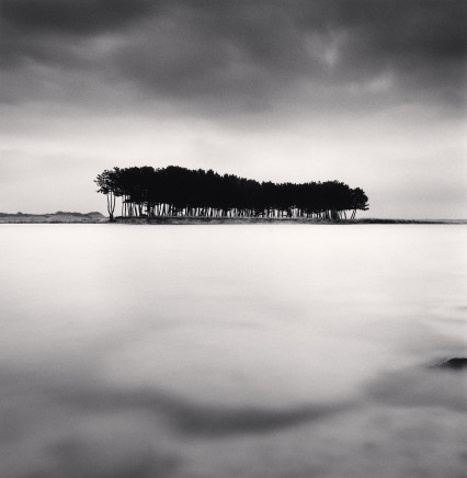 Michael Kenna, Pine Trees, Study 4, Wolcheon, Gangwondo, 2011