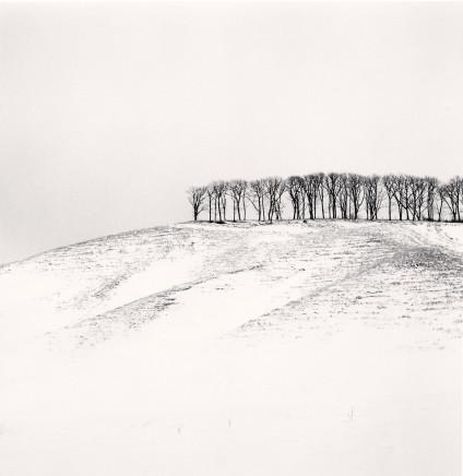 Michael Kenna, Hilltop Trees, Study 4, Teshikaga, Hokkaido, Japan, 2016