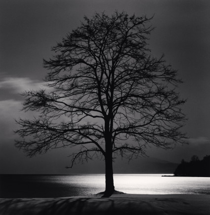 Michael Kenna, Toya Lake Tree, Sobetsu, Hokkaido, Japan, 2009