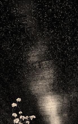 Albarrán Cabrera, The Mouth of Krishna, #166, Japan, 2013