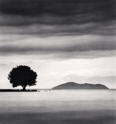 Michael Kenna, Biwa Lake Tree, Study 4, Omi, Honshu, Japan, 2003