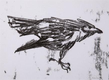 Helen Denerley, Raven iv, 2019