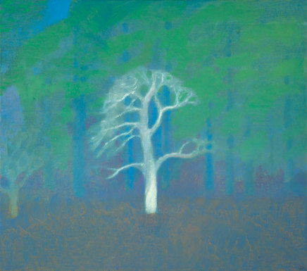 Jane MacNeill, Ghost Pine i