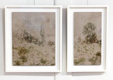 Richard Stone, dry, 2012