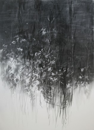 Kyounghee Noh, Untitled (Reflection), 2010