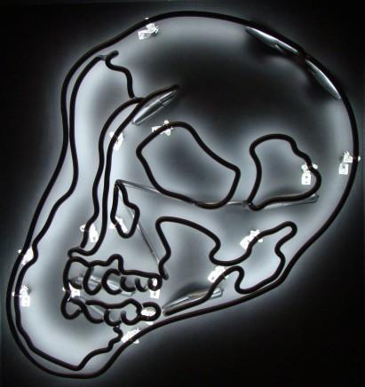 Anne Katrine Senstad, Black Warhol Skull, 2010