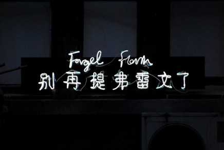 Anne Katrine Senstad, Forget Flavin (English and Chinese), 2008