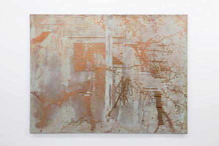 Caroline Jane Harris, Hard Copy (Liquid Light), 2018